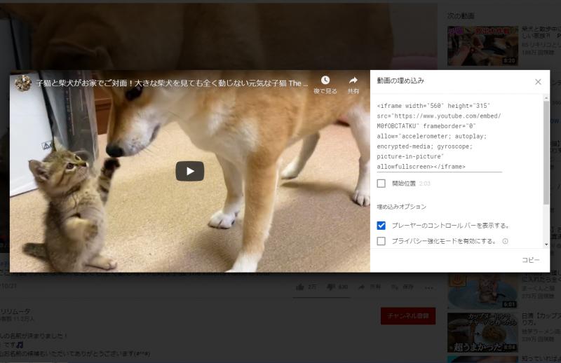 「動画の埋め込み」タグ表示画面